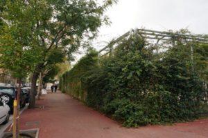 Muros vegetales instalados con la malla de cables de acero X-TEND